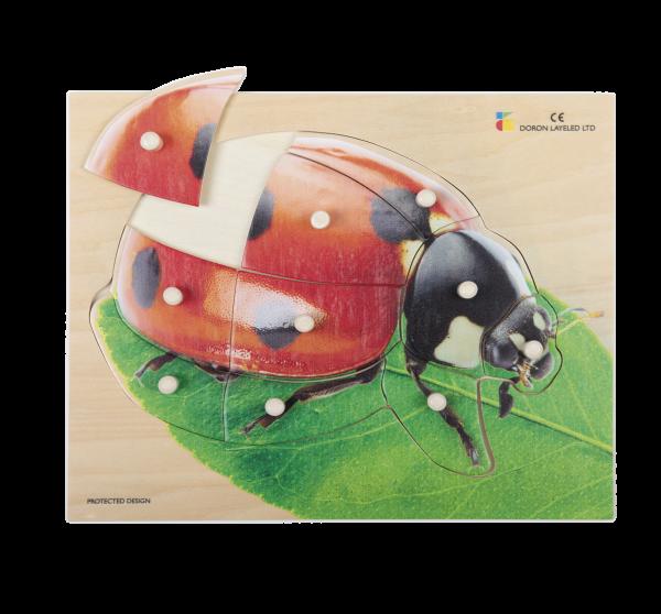 Holz-Puzzle realistisch Marienkäfer